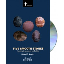 Five Smooth Stones - Learning to overcome our Goliaths + CD