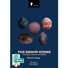Five Smooth Stones E-Book