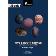Five Smooth Stones eBook