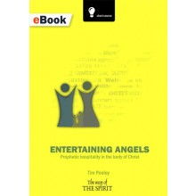 Entertaining Angels eBook