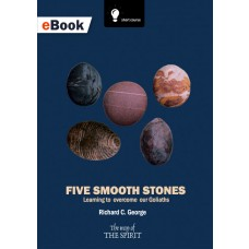 Five Smooth Stones eBook
