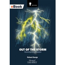 Out of The Storm eBook